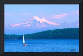 Mt Baker sails