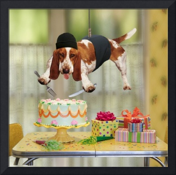 Mission Impossible Basset Hound