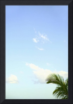 Abstract Perspective Of Coconut Palm Trees And Blu