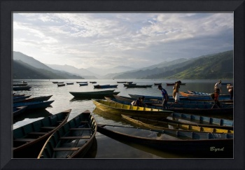 The boats of Phewa Tal