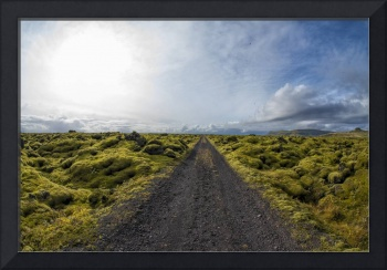 Dirt Road and Mossy Lava