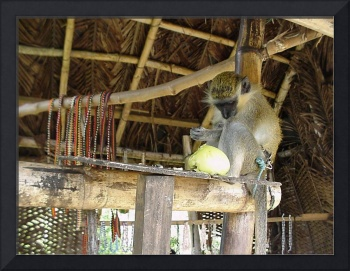 Green Monkey with Beads 2