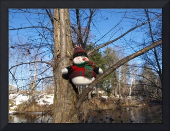 My snowman in a tree 6 (DETAIL)