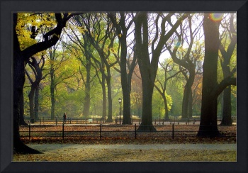 Autumn in Central Park, New York City