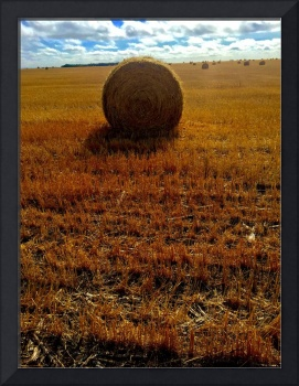 South Dakota hay bale