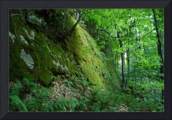 Mossy Cliff