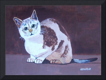 CAT WITH  BROWN BACKGROUND