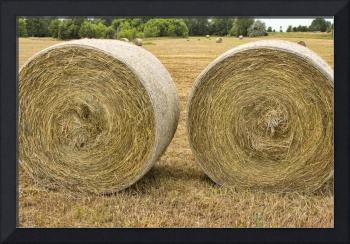 Two Round Hay Bales
