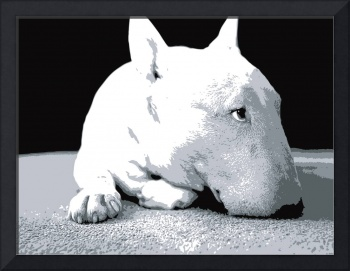 English Bull Terrier, Pop Art Print