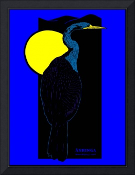 Anhinga and Night Sky
