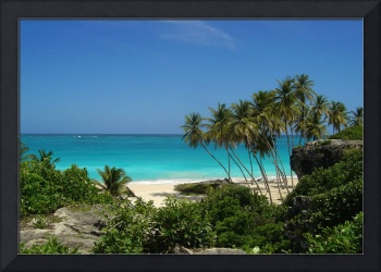 Secluded Beach in Barbados
