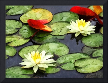 Water Lily Pond in Autumn