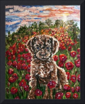 Puppy and Poppies