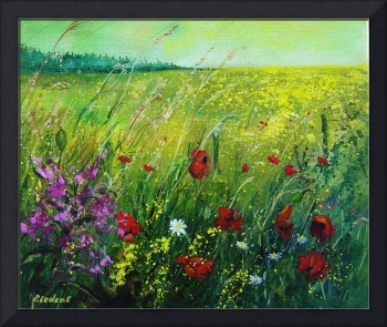 Landscape red poppies 56