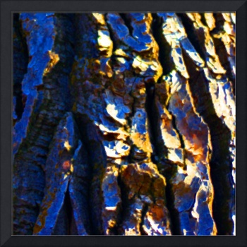 Cottonwood Abstract    0700-4