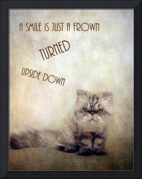 A Smile is Just a Frown