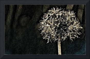 Contemporary Fine Dandelion Art Work