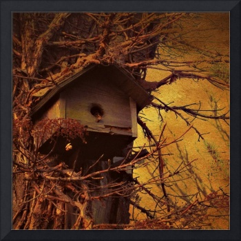 My Father's Birdhouse