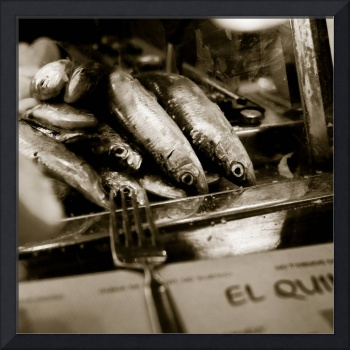 Sardines Awaiting their Fate