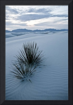 white sands ii