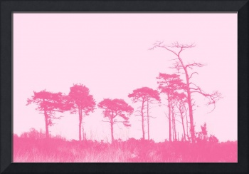 Forest Trees in Pink