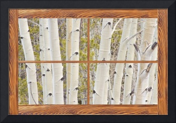 Winter Aspen Tree Forest Barn Wood Picture Window
