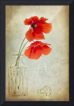 Two Poppies in a Glass Vase