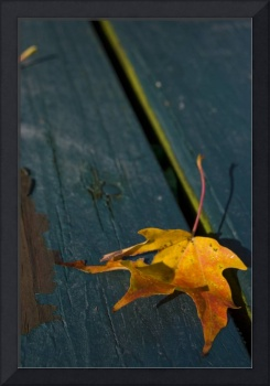 Yellow Leaf on Blue Table