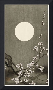 Plum Blossom Under a Full Moon by Ohara Koson