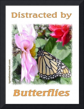 Distracted by Butterflies 04139