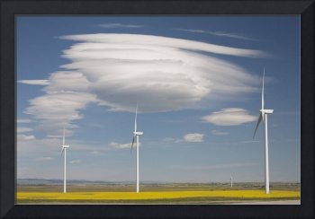 Dramatic Clouds With Wind Mills In A Flowering Can