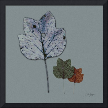 Three Leaves Modern Art by Ginette
