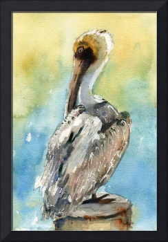 Pelican bird art, Pelican Brief