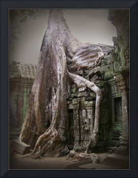 The Secrets of Angkor