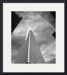 Transamerica Building by David Smith