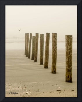 Posts on Beach with Seagull
