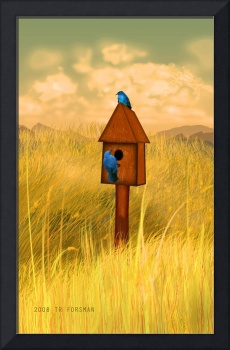BIRD HOUSE in grass