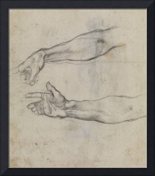 Michelangelo~Studies of an outstretched arm for th