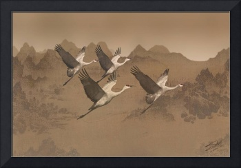Cranes Migrating Over Mongolia