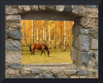 Stone Window Autumn Horse View