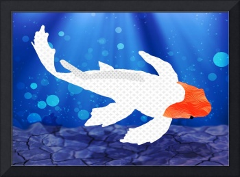 Textured Kohaku Koi in Blue Pond with Bubbles