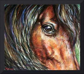 Gaze By Janet Ferraro Fine Art