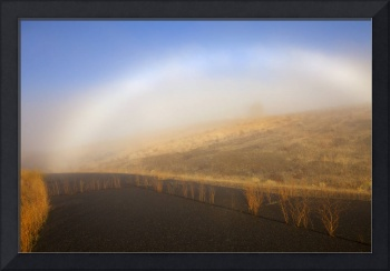 Autumn Fog bow