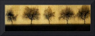 Five Willowy Trees Textured