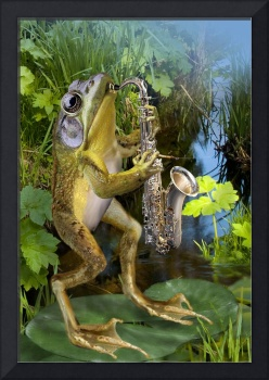 Frog saxephon player