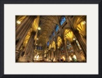 Nave, St. Patrick's Cathedral by Dave Wilson