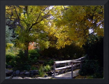 Fall afternoon at the Botanic Gardens