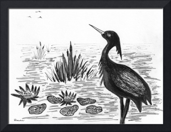 Crowned Night Heron Lily Pond Paradise in Ink D1