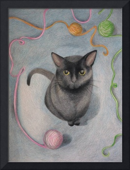 Cat with Yarn Drawing Davidson