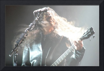 Alice in Chains - Bassist Mike Inez Hair